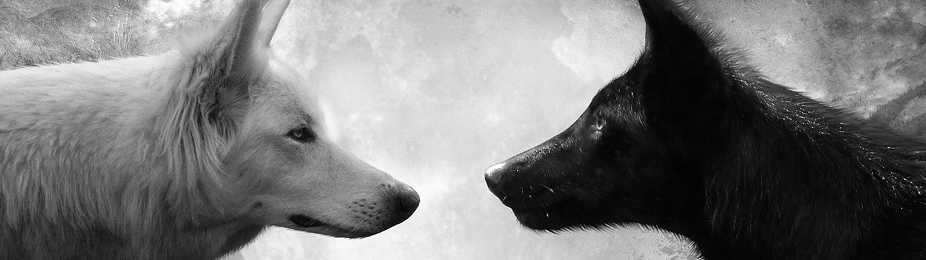 La Leggenda dei Due Lupi
